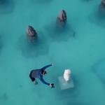 【视频】世界海洋日快乐@费尔蒙斯汝芬富士岛 Fairmon Maldives Sirru Fen Fusshi Resort