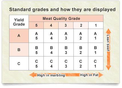 【干货】各国牛肉等级大不同,你会区分吗?